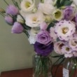 Locally Grown, Certified Organic, Fresh Harvested Flowers
